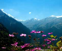 Shimla Package Tour