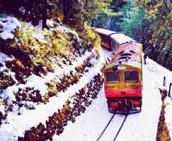 Tour Package In Shimla
